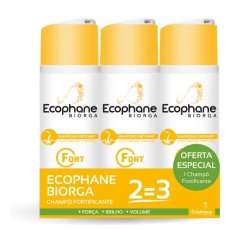Ecophane Champo Fortif +Oft Ch 200 Duo