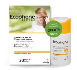 Ecophane Po Saq X30+Ch Fortif100mL