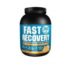 Gold Nutrition Fast Recov Po Laranja 1Kg